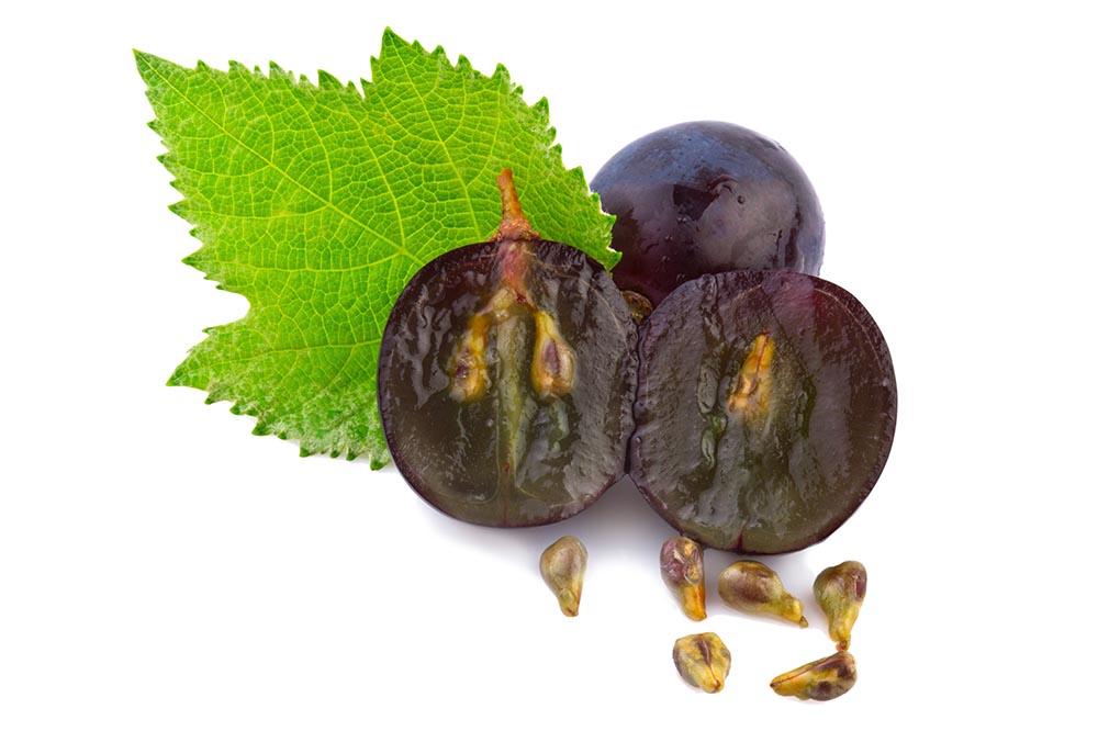 Göcseji szőlőmagolaj